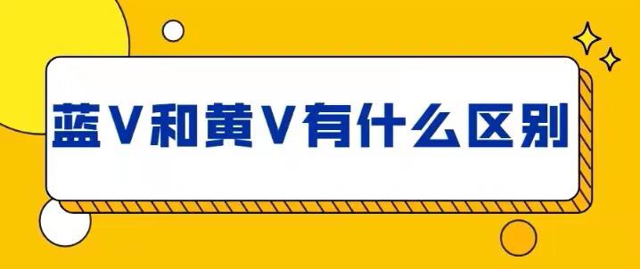 蓝V和黄V